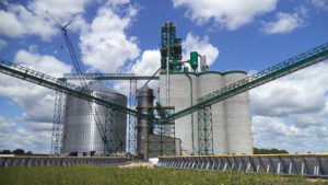 Green CAMCORP medium pressure reverse air dust collector installed on top of grain elevator
